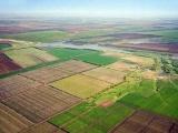 Хабара у фермера не вимагали – у Держгеокадастрі пояснили ситуацію із виділенням землі